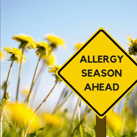 Allergy season is ahead, it's coming