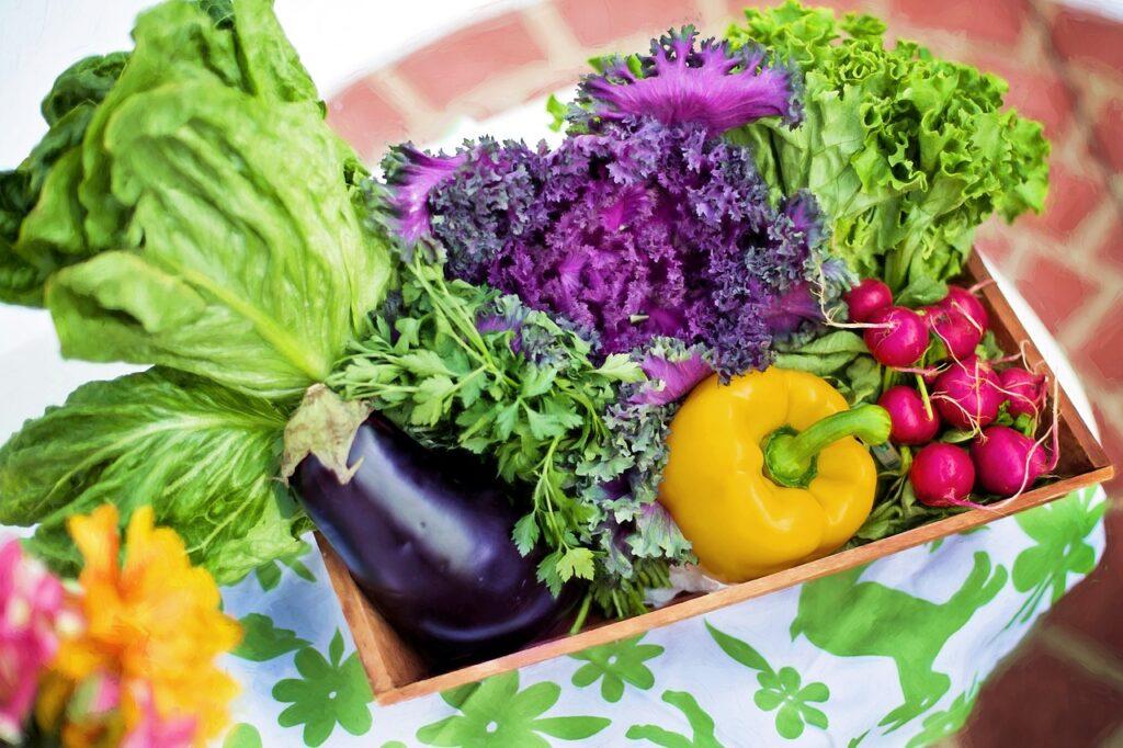 Prevention Through Nutrition Education, vegetables fresh