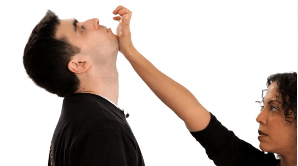 Basic Training Techniques in Krav Maga